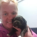 Brown and white Portuguese Water dog pup being held by Jane Anderson, Bluegrace