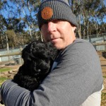 Pat's new black Portuguese Water Dog puppy