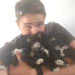 Will holding Bluegrace Portuguese Water Dog puppies