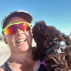puppy, beach, portuguese water dog, bluegrace